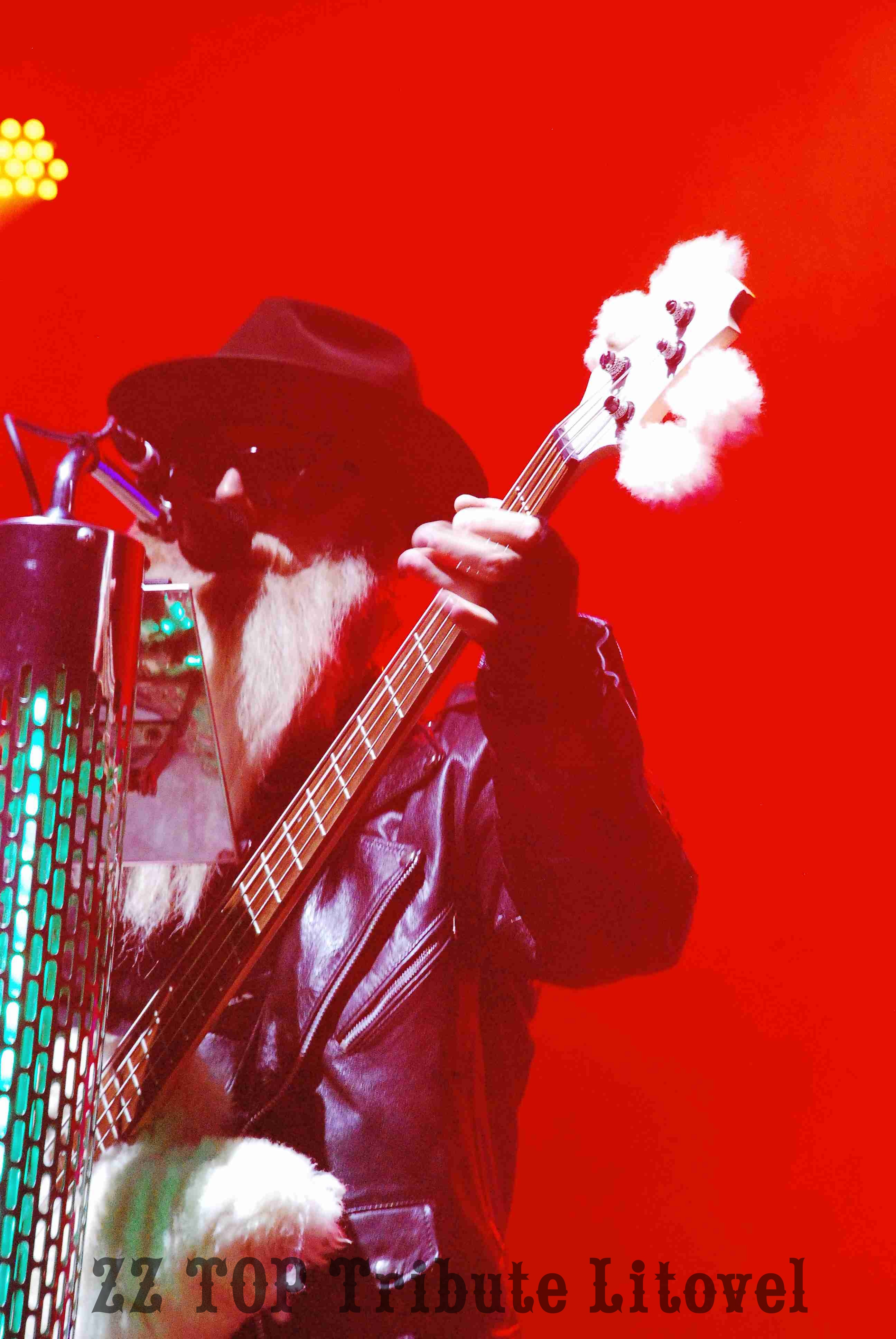 ZZTOP_TRIBUTE_LITOVEL011